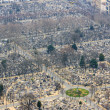 Montparnasse Cemetery — Stock Photo