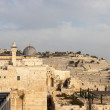 Stock Photo: Panoramdome of mousque of Al-aqsa