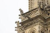 Chimères laids sur la cathédrale notre dame — Photo