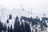 Power transmission line on the tops of the Alps — Stockfoto
