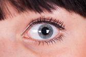 Beautiful eye. — Stock Photo