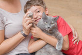 Mother and son with cat having fun. — Stockfoto