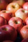 Many apples — Стоковое фото