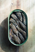 Smoked sprats in a jar — Stockfoto