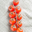 Branch of tomatoes from above — Stock Photo