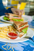Sandwich on plate and fried — Stock Photo