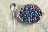 Blueberry breackfast in village — Stock Photo