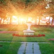 City park at sunset — Stock Photo #48098663