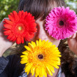 Cute girl hide her eyes by gerbera flowers — Stock Photo #48098667