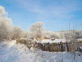 Ländliche winterlandschaft — Stockfoto