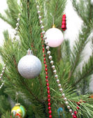 Christmas decorations on the pine — Stock Photo