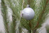 Christmas decorations on the twigs of pine — Stock Photo