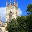 York Minster, England — Stock Photo #30198735