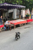 Vernici artista cinese sulla strada — Foto Stock