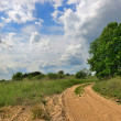 Stockfoto: Dirt road