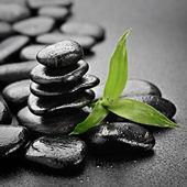 Zen stones — Stock Photo