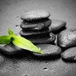 Zen stones — Stock Photo #40272115