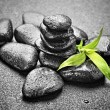 Zen stones — Stock Photo #40272161