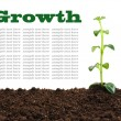 Stock Photo: Growth