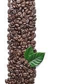 Koffie granen en bladeren — Stockfoto