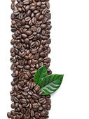 Ziarna kawy i liści — Zdjęcie stockowe