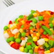Mixed vegetables on a plate - Stock Photo