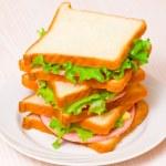 Sandwiches — Stock Photo #31399249