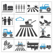 Stock Vector: Agriculture icons