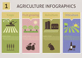 Agriculture infographics — Stock Vector