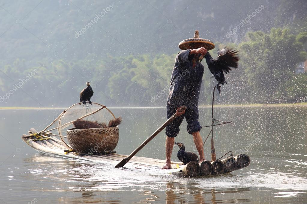 китайцы ловят баклан