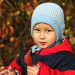 Little boy relaxing in autumn park — Stock Photo #14677493