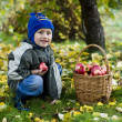 Boy with apples — Stok fotoğraf