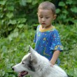 Little boy with dog — Stock Photo