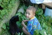 Kedi ile küçük çocuk — Stok fotoğraf