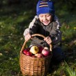 Boy with apples — Stock Photo #15411949