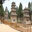 The Pagoda Forest at the Temple in Shao Lin, located in XiAn Chi - Stock Photo