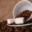 Cup and Background coffee beans with sugar. — Stock Photo #16044635
