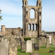 Stock Photo: St Andrews cathedral grounds, Scotland, UK