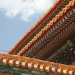 Architecture in the Forbidden city, Beijing, China — Stock Photo #18466129