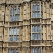 Houses of Parliament, Westminster Palace, London gothic architecture - Lizenzfreies Foto