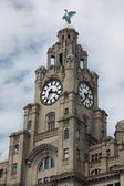 Liverpool's Historic Liver Building and Clocktower, Liverpool, England, United Kingdom — Stock Photo