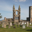 St Andrews Cathedral, Scotland — Stock Photo
