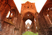 Sweetheart Abbey, ruined Cistercian monastery — Stock Photo