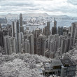 Hong Kong from peak Victory - Stock Photo