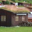 Home with a perfect turfed roof during summer time in the norwegian mountains — Stock Photo #25332055