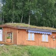 Home with a perfect turfed roof during summer time in the norwegian mountains — Stock Photo #25332455