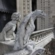 Chimera on Notre Dame Cathedral — Stock Photo #25785679