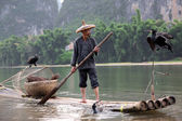 YANGSHUO - JUNE 18: Chinese Chinese man fishing with cormorants — Stock Photo