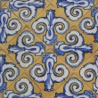 Valencia azulejos — Stock Photo #27824441