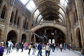 LONDON, UNITED KINGDOM - June 19: Interior view of Natural History Museum — Stock Photo